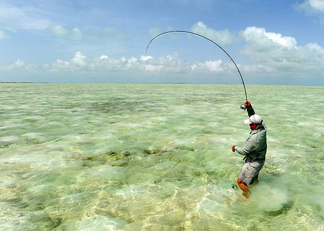 Jeffrey pulling his fishing rod after catching some stunning fish in Cozumel.