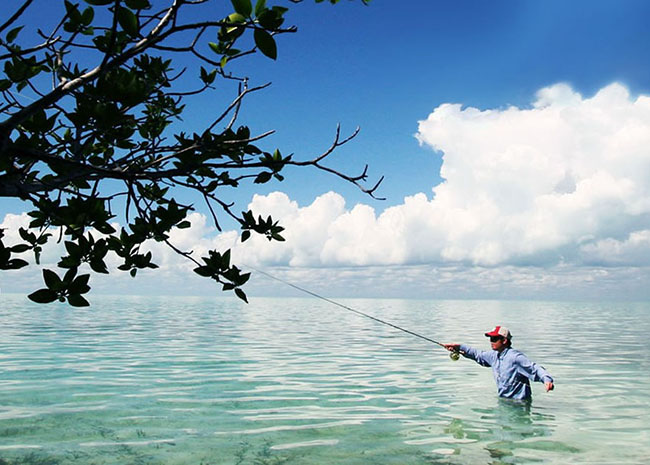 Jeffrey fly fishing in the Cozumel's shallow waters.