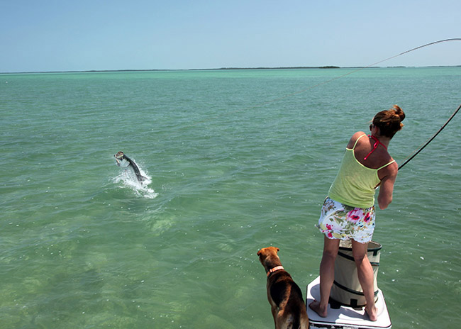 Linda pulling out a big catch in her fly fishing excursion in Cozumel.